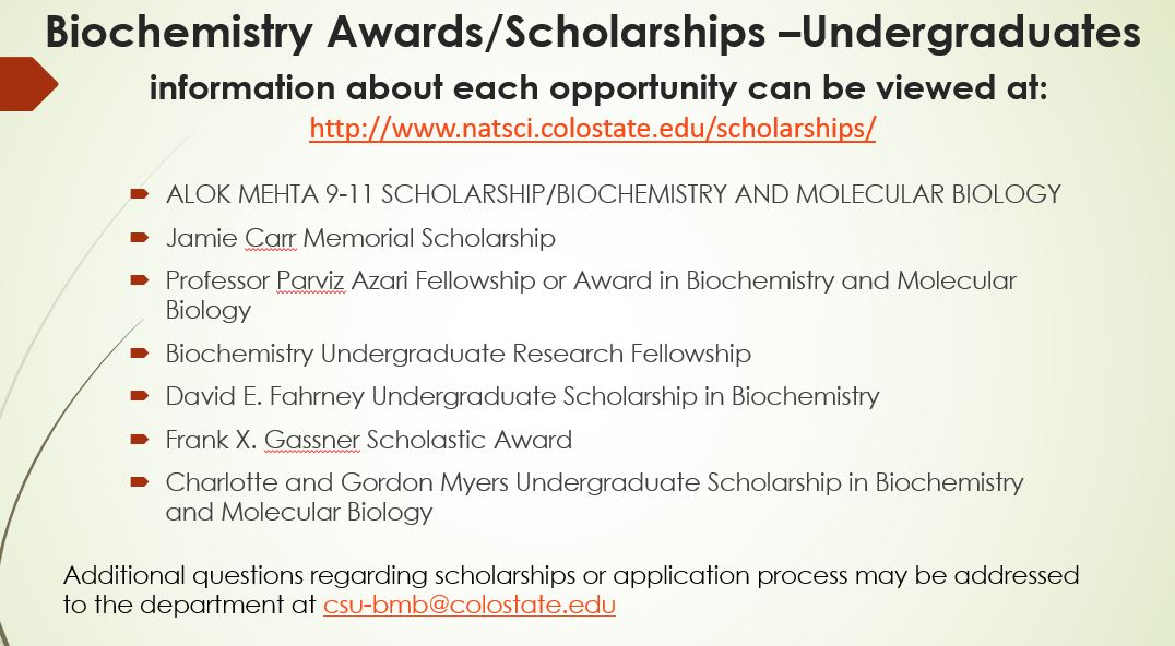 BMB PP Scholarhips